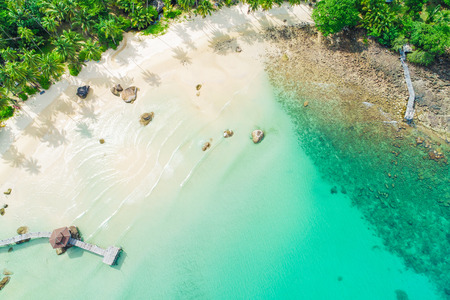 Aerial view white sand beach with coconut palm tree turquoise water summer landscape