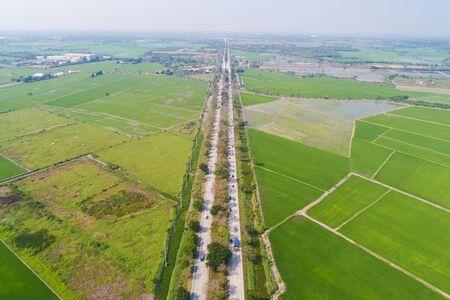 Rural road pass through green rice plantation field aerial view