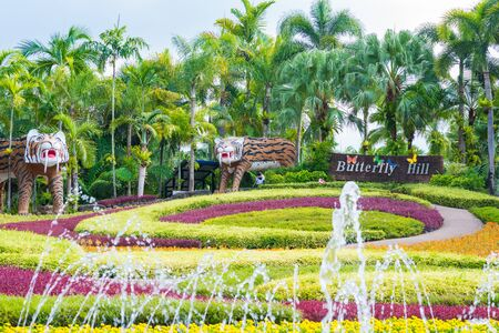 Colourful botanical flower garden spring season