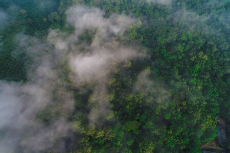 Mountain tropical forest morning with fog aerial view Banco de Imagens - 132097297