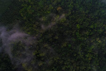 Mountain tropical forest morning with fog aerial view Banco de Imagens - 132097416