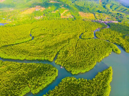 Aerial vire green tropicl mangrove forest nature landscape Banque d'images