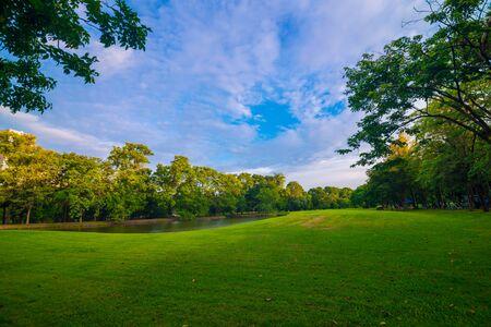 Parc public vert pré ciel bleu pour le paysage de loisirs