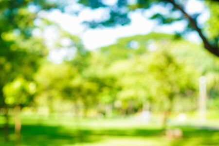 Abstract blurred green city park with tree bokeh nature background