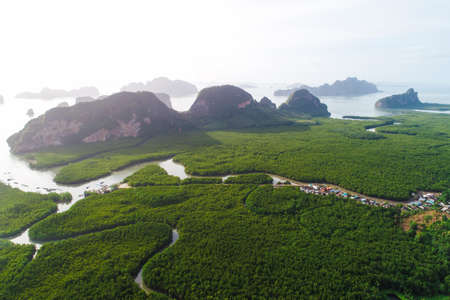Aerial top view green tropical mangrove forest with river to sea bay morning sunrise ecology system nature landscape Reklamní fotografie