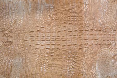Crocodile skin texture Reklamní fotografie