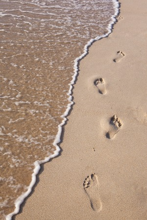 footprints on sand beach along the edge of sea Stok Fotoğraf