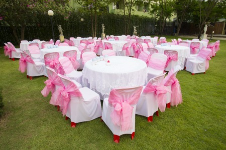 line lines luxury meeting: on wedding table.