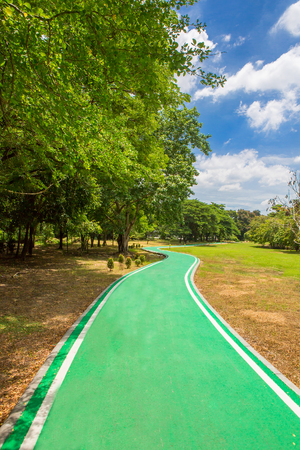 Green bicycle path in the park Stock Photo