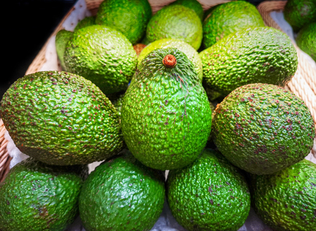 the Avocado fruit for sale