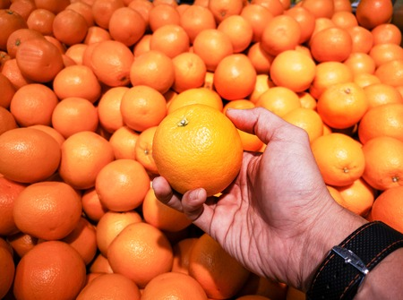 the Oranges in the market.