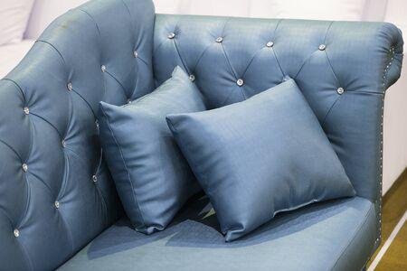 Blue leather sofa is a beautiful backdrop.