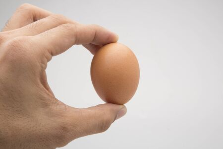 Single brown chicken egg isolated on white 版權商用圖片