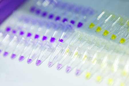 Pcr well plate microplate with biological samples