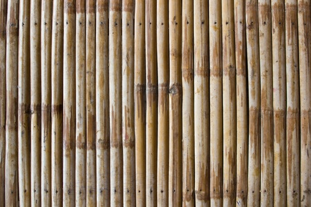 Bamboo pattern for background,wood wall photo