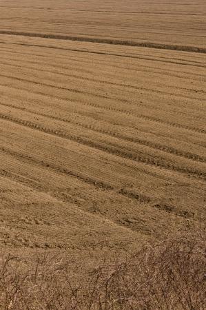 plowed field: Plowed field in Italy land