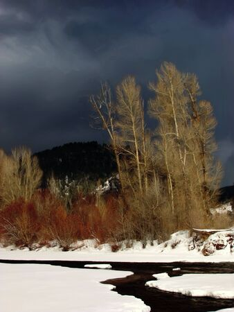 A photo art illustraton of a stream and trees  in winter with storm clouds