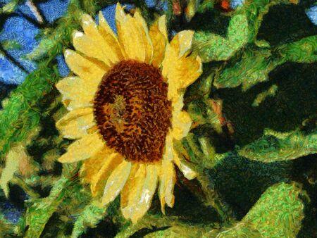 A digital photo-art illustration of a sunflower blossom Banco de Imagens