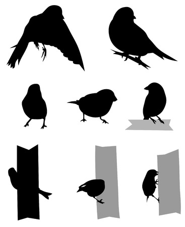 Set of 8 Greenfinch silhouettes Stock Vector - 7301771