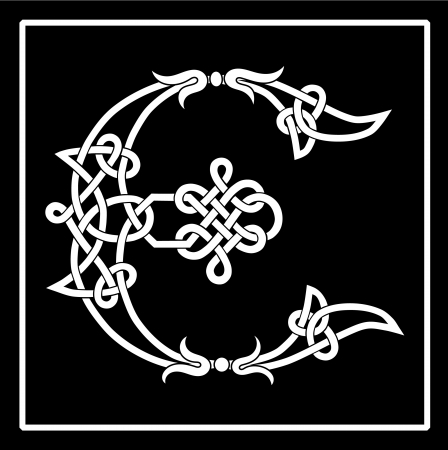 Celtic knot-work capital letter E Vector