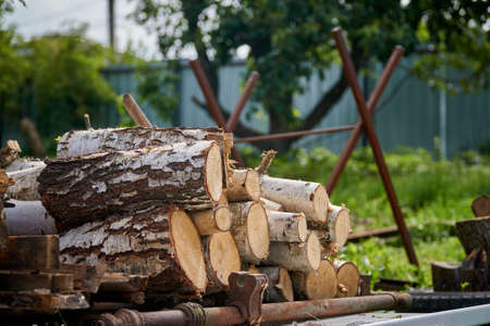 Birch logs are stacked and prepared for felling against the backdrop of a support for cutting logs. Close-up