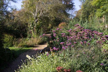 Furzey Gardens, New Forest Stock Photo - 12192002