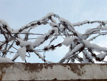 delimit: Barbed wire on a wall covered with snow flocks Stock Photo