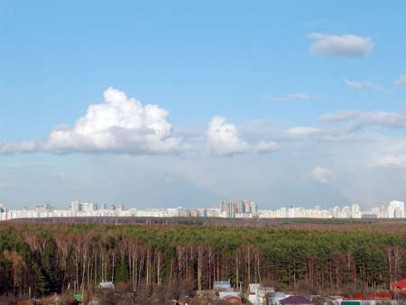 megapolis: A forest with a megapolis on the horizon on a sunny day