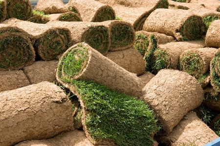 Rolls of natural grass to be planted as grass lawns Imagens