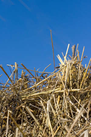 A hay stack over a blue sky background photo