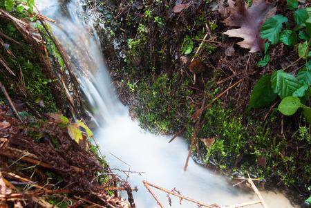 Fresh water stream photo