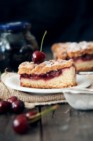 appetising: Delicious and fresh cherry pie