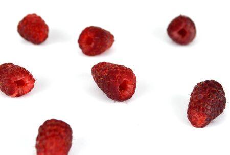 limbo: Raspberries limbo Background. High resolution color image.