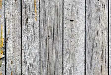 old wood plank background, vintage wooden texture  Stock Photo - 20898370