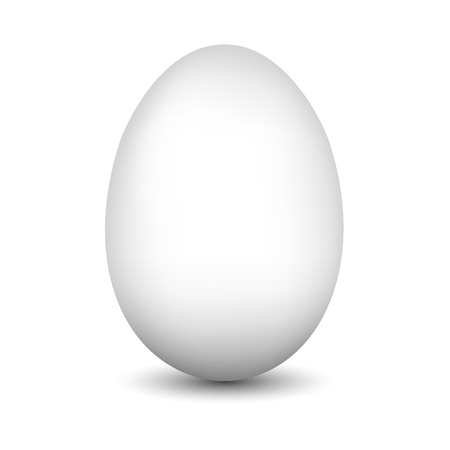 White egg on white. High resolution color illustration. illustration