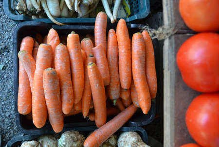 healthily: Fresh garden carrots for sale at farmers market