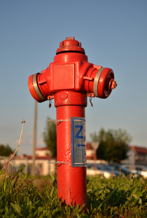 roadside fire hydrant closeup in urban setting.