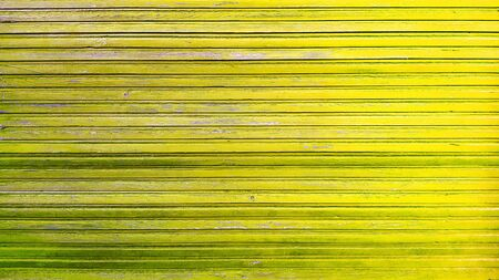 Top view of green background wooden planks board texture
