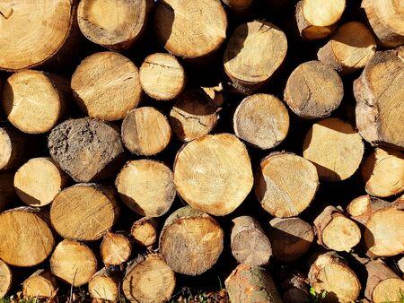 Background stack of wood Banco de Imagens