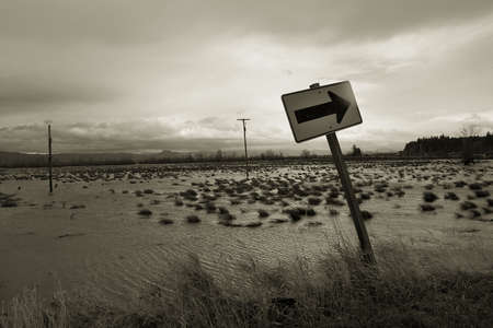 Photo of flooded pastures on Svensen Island, near Astoria, Oregon