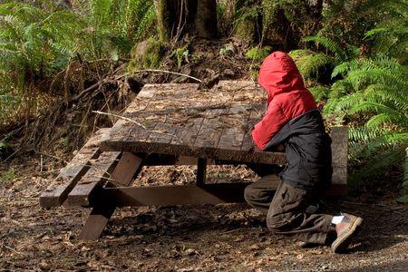 moscerino: Fotografia di un infelice ragazzo in un mantello rosso seduta ad un tavolo picnic abbandonati a Gnat Creek