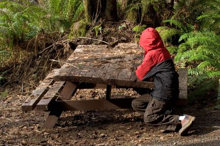 gnat: Photo of a an unhappy boy in a red coat sitting at a derelict picnic table at Gnat Creek Stock Photo