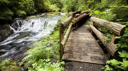 gnat: Photo of Gnat Creek rushing by small wooden bridge