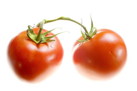 Two tomatoes isolated on a white background. photo