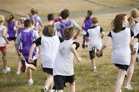 Two teams of cross country runners in a big race.