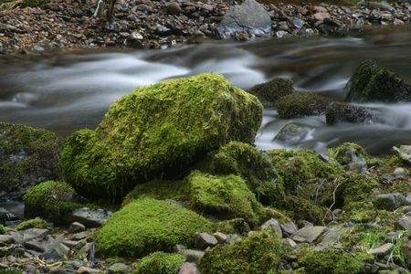 rushing water: Photo of rushing water and a rock with green moss