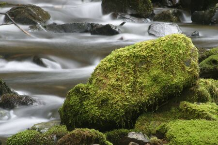 rushing water: Photo of rushing water and a large, mossy rock.