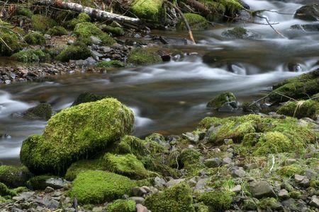rushing water: Photo of rushing water and mossy rocks.