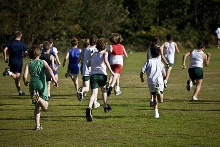 cross country: Cruz corredores pa�s despegar en un pack de la l�nea de salida.