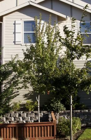 recently: Recently built suburban condos in trendy new neighborhood